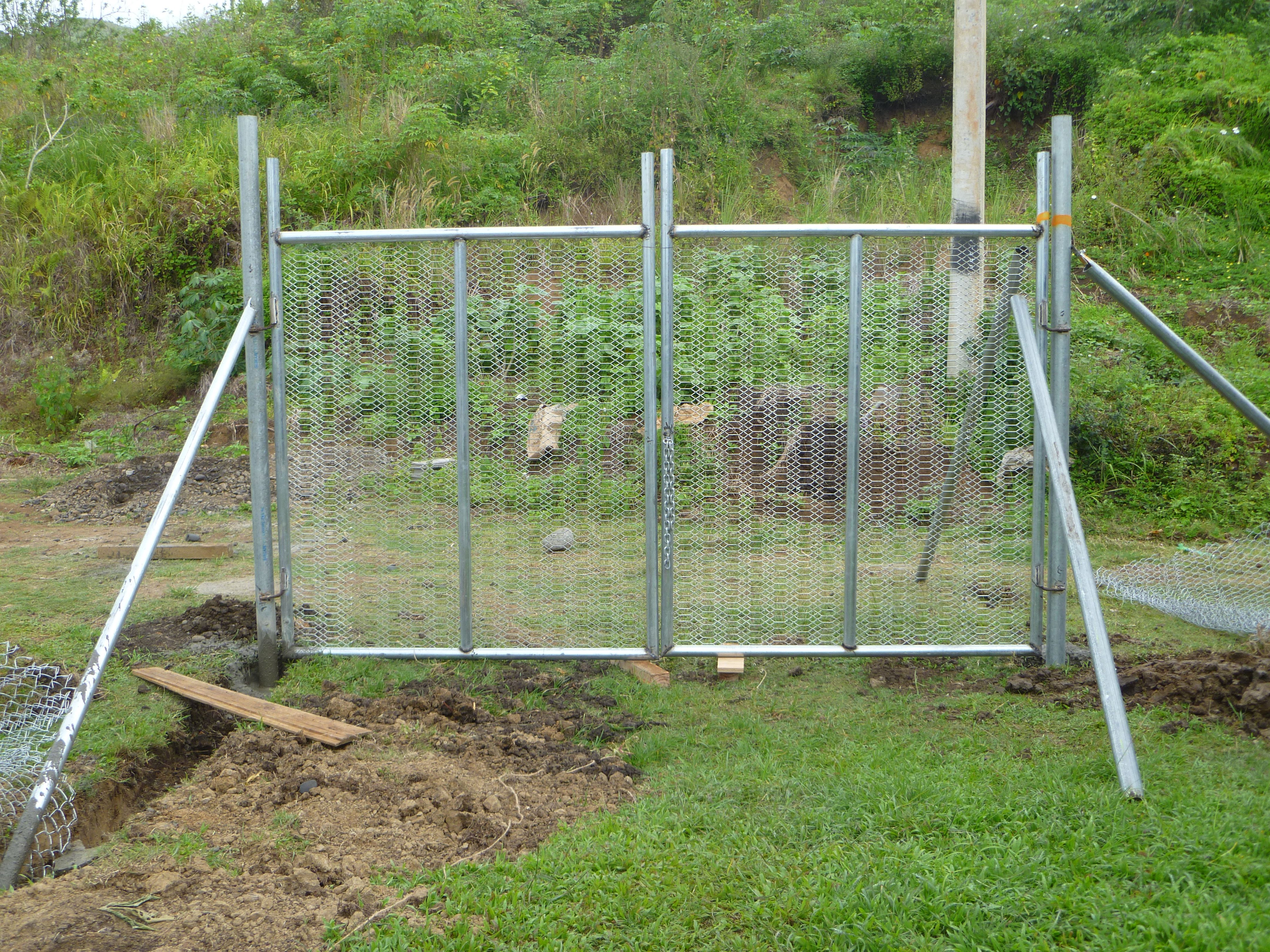One-of-two-gates-built-with-the-fence